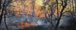 Ukraine Chernobyl Fire